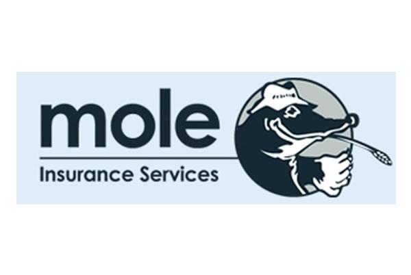 Mole Insurance Services